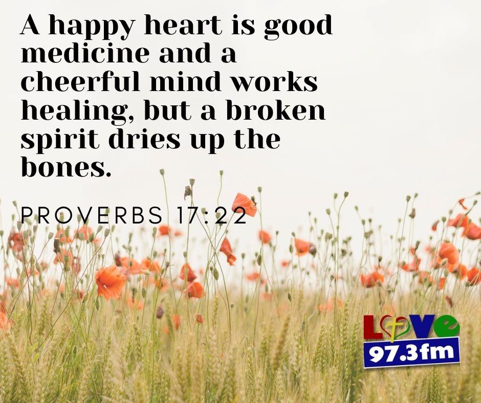 Proverbs 17:22